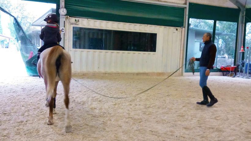 Avviamento all'equitazione